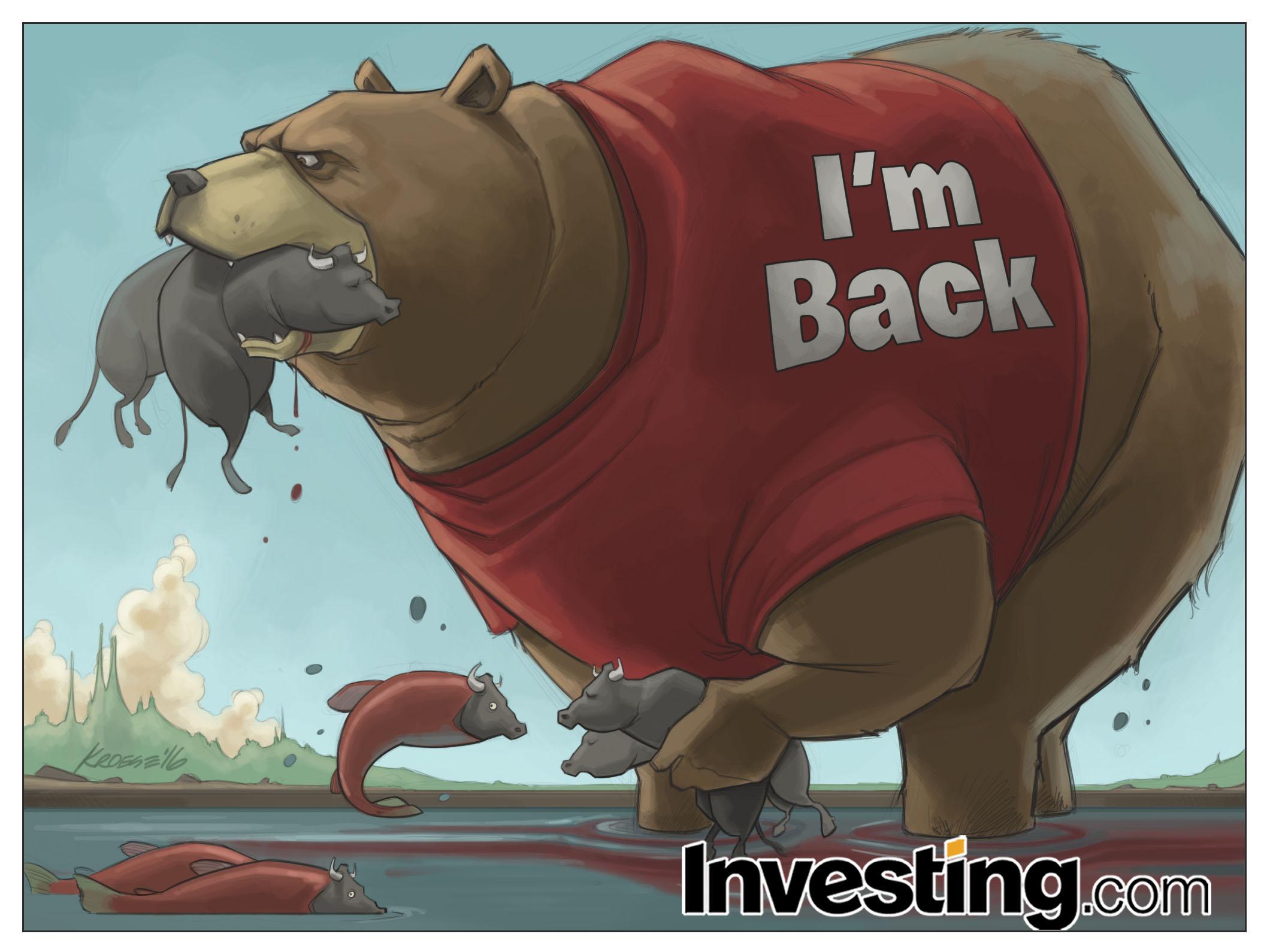 2016年熊戻る