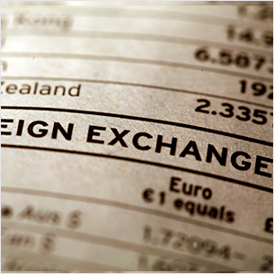 国内FXの市場規模 (17/11/30)