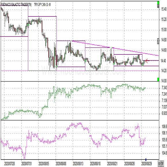 トルコリラ円ショートコメント(2020年8月31日)