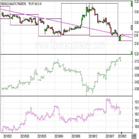 トルコリラ円ショートコメント(2021年6月21日)